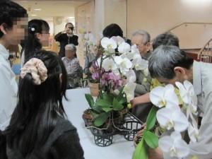 県立伊丹西高校ボランティア部 蘭のご訪問jpg