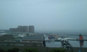雨の勢いでかすんでおります