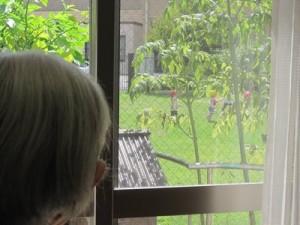 お隣の保育園の園児さんが遊びにきてくれました