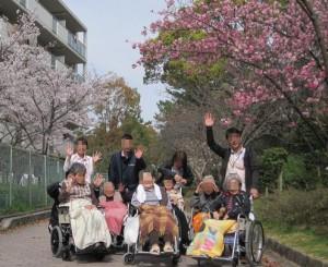 たんたん小道の桜です