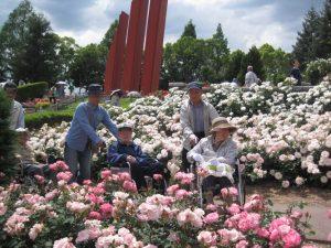 バラ公園最高―!