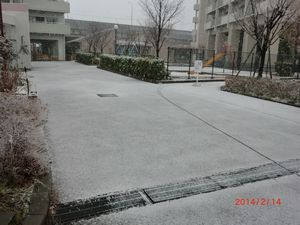 雪0214