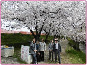 桜ウィーク6