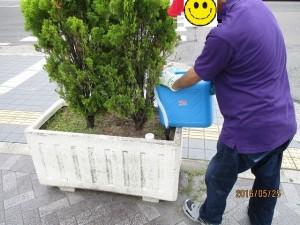 花壇管理作業